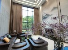 王仙岭下御景轩达  1-2楼挑空复式楼 带车库 售218万