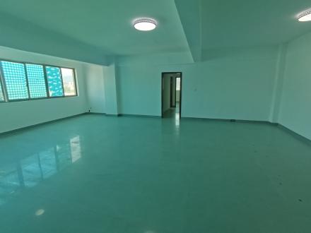 出租-郴州特产交易大厦 4室2厅2卫 193㎡ 3800元/月