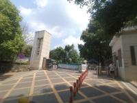 出售-郴州市八中学校里 2室 62㎡ 精装 送独立花园40平米 35万