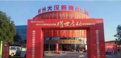 大汉集团/大汉新商业生态城